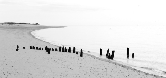 herring-run-beach-2-reimagined-bw