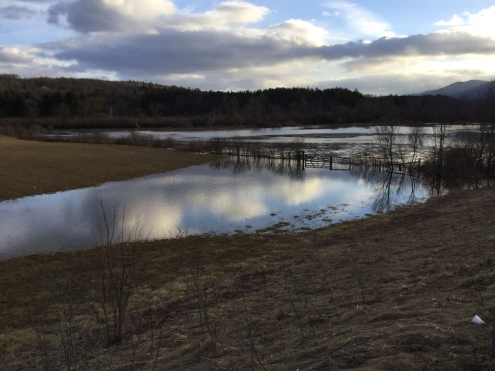flood-season