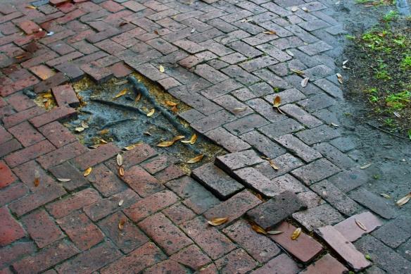 Sidewalk_resize