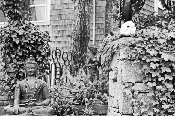strangers garden.JPG
