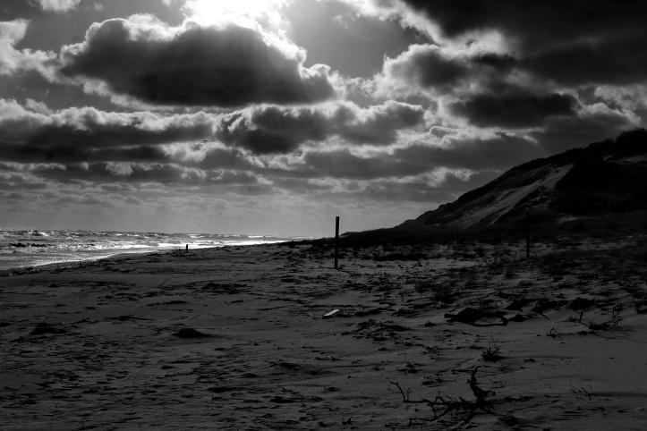 dark beaches