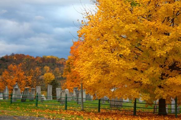 Hartford NY 4.jpg