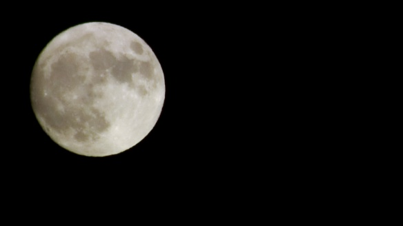 moon g