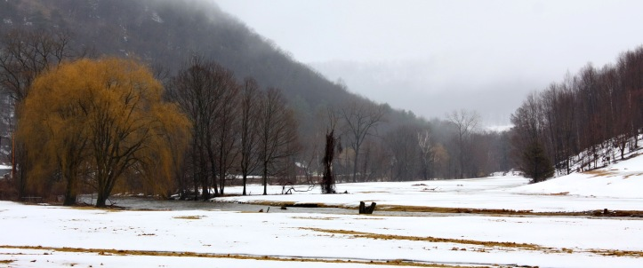 winter color.JPG