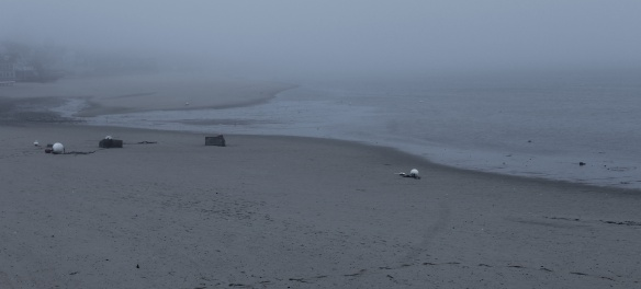 tides and fog