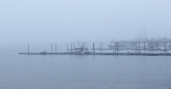 fog on the dock.JPG