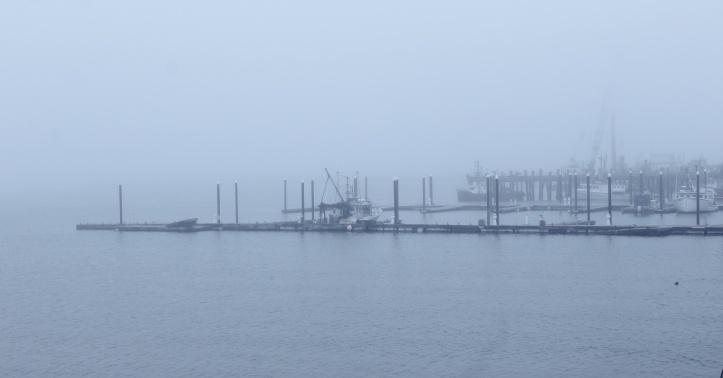 fog on the dock.JPG