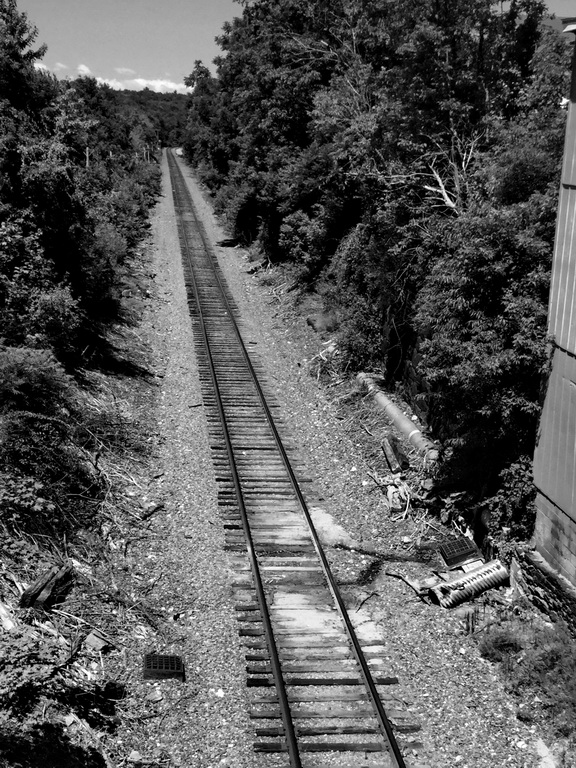 train_resize