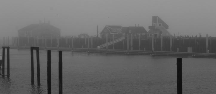 paradoxical fog.JPG