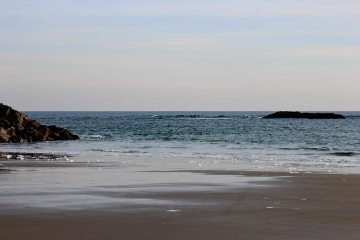 shore 1_resize