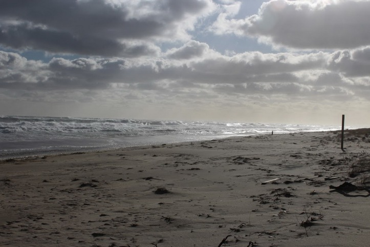 Provincetown beach_resize