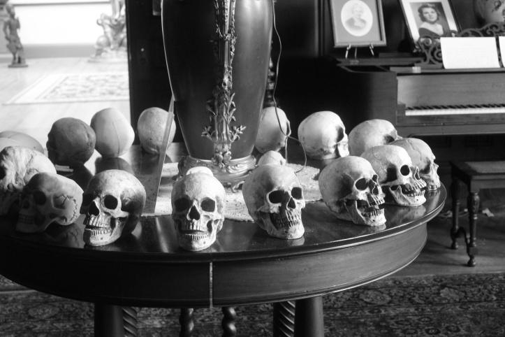 skulls on the table.JPG