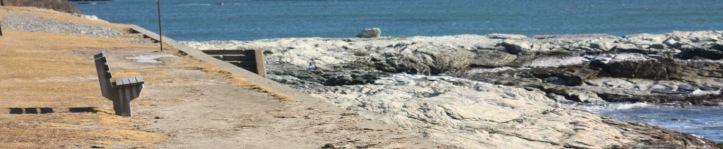 newport coastline 3.JPG