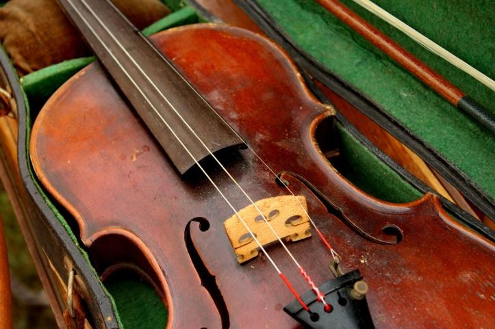 violin 2_resize